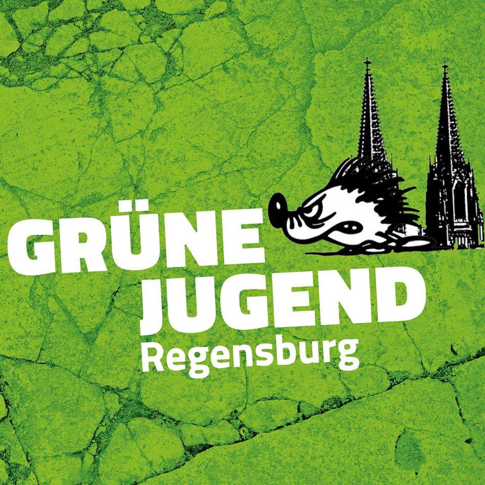 Grüne Jugend Regensburg neben einem Igel und Dom